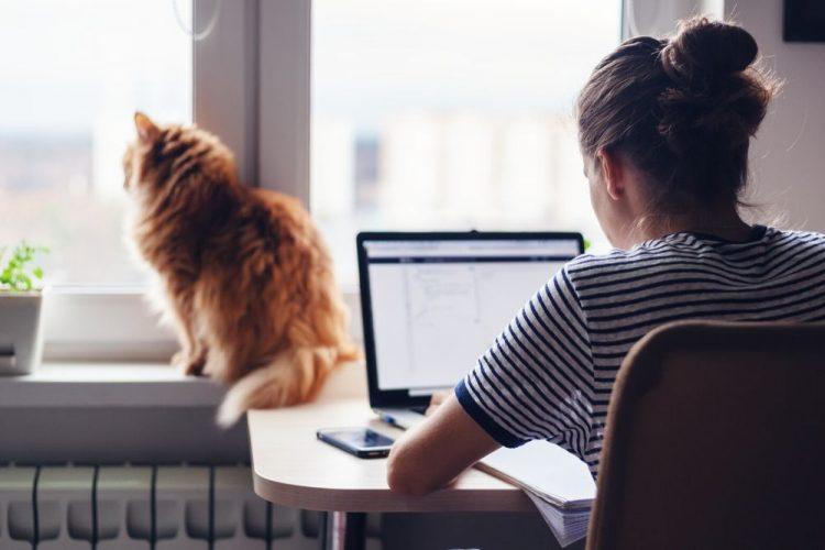 jovem procurando emprego online nas consultorias de recursos humanos
